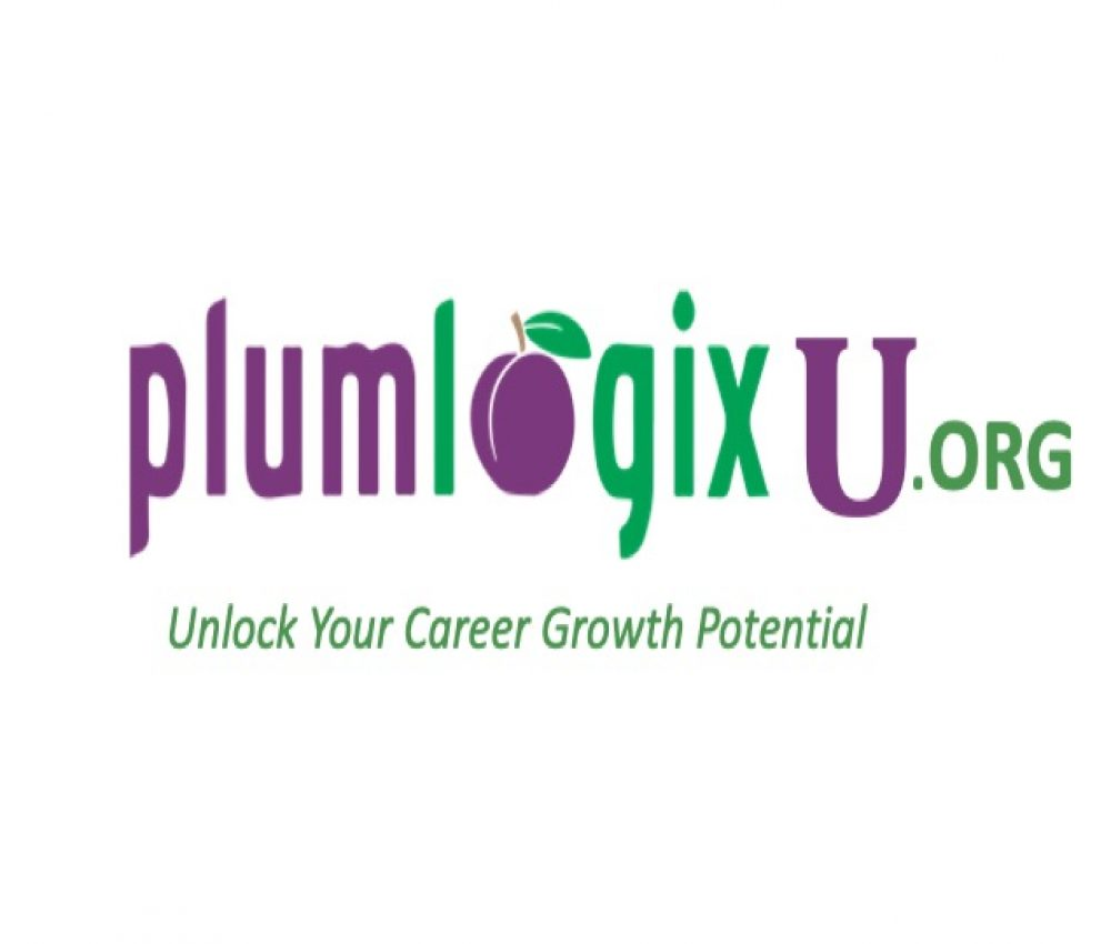 Plumlogix U logo
